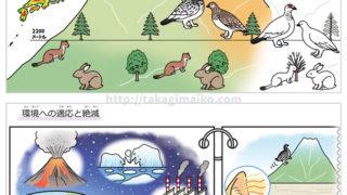 理科の解説イラスト、ライチョウ・自然環境のイラスト(朝日小学生新聞 2019年4月20日付け)