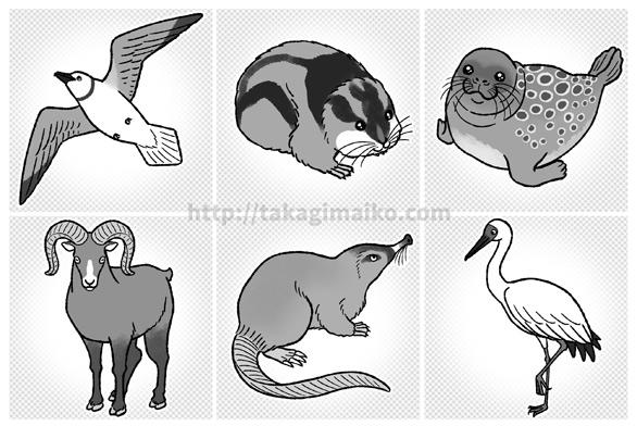動物のイラスト(ヒメクビワカモメ、アムール・レミング、ワモンアザラシ、ユキヒツジ、ロシアデスマン、ソデグロヅル)
